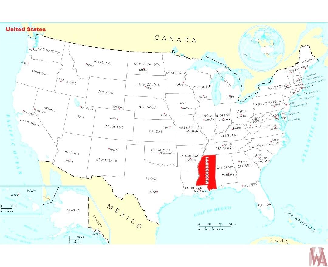 Political Maps Of The Usa Whatsanswer