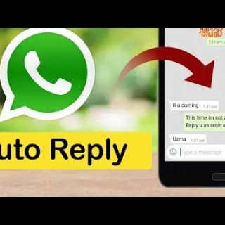 auto-reply messages using whatsappgb