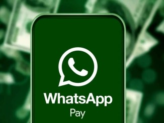 WhatsApp Money Transfer Returns