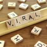 viral videos whastapp