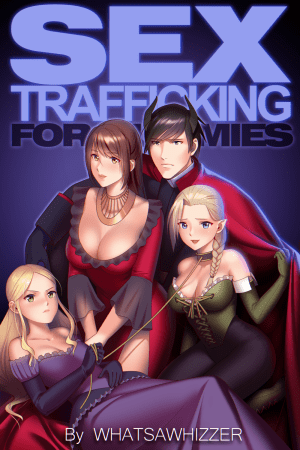 Sex Trafficking for Dummies Cover