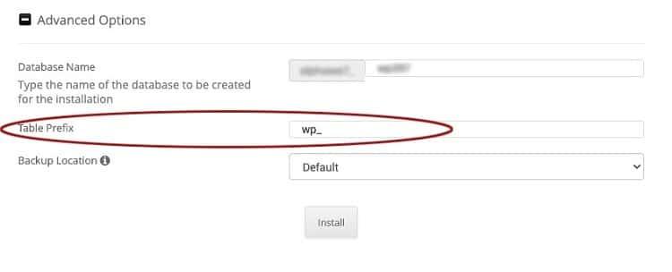 WordPress Installer Advanced Options