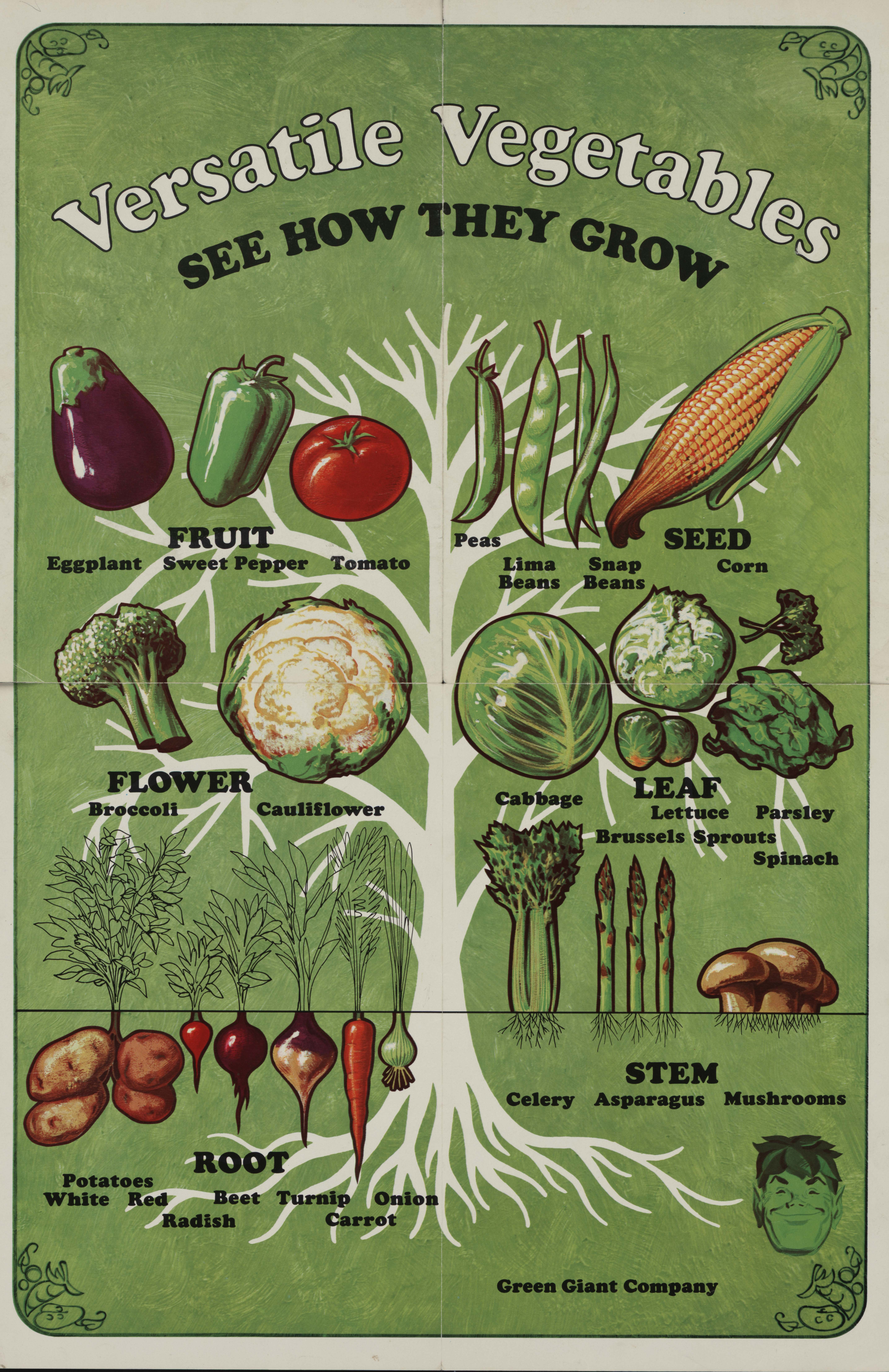 vegetable posters children s nutrition what s cookin special collections