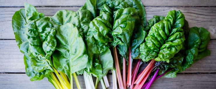 rainbow chard on a wooden background