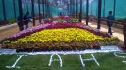 republic-day-flower-show-january-2017-at-glass-house-lalbagh-bengaluru-12