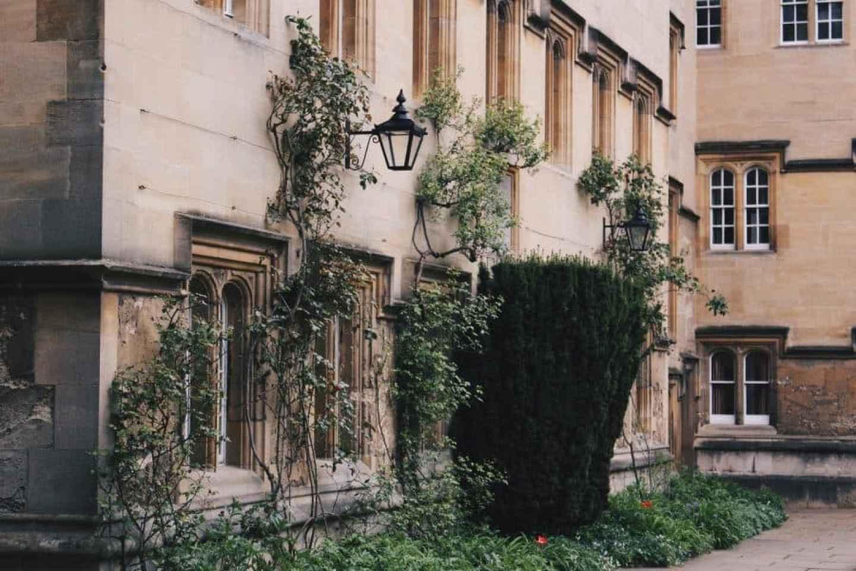 OXFORD IN BLOOM: BOOKISH WISTERIA HYSTERIA