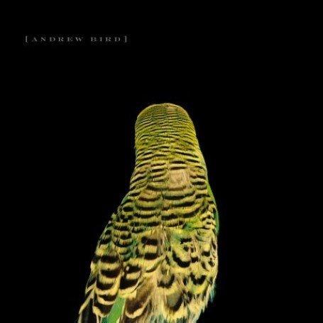 8/11/16 - Andrew Bird - Imitosis