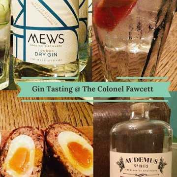 Gin Tasting @ Colonel Fawcett
