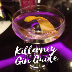 Killarney Gin Guide on What's Katie Doing? blog