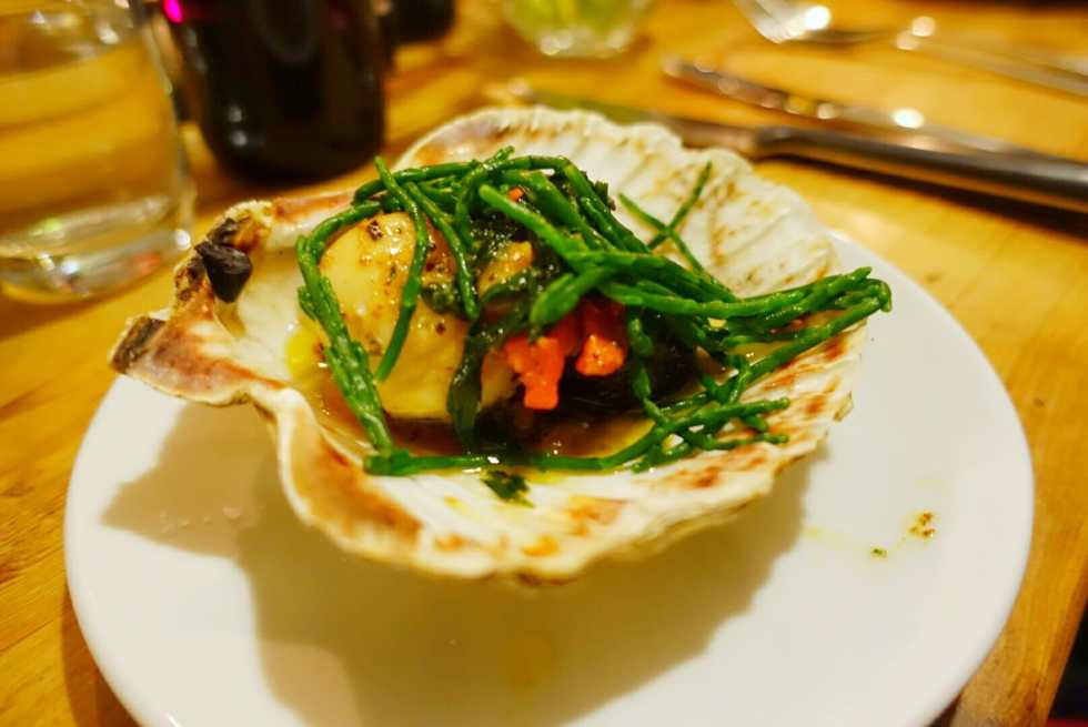 Scallops served in the shell with black pudding