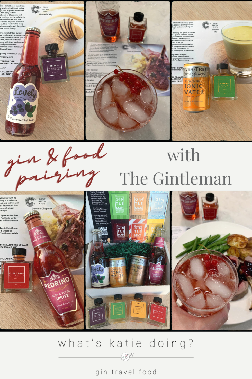 gin & food pairing with the Gintleman - selection of flavoured gins & mixers