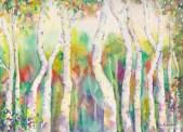 Birch Trees, 12x9, $210