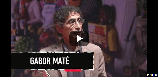 Gabor Mate's Ted Talk on his Perspectives on addiction.