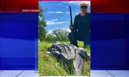 'Don't mess with Nana': TX grandma kills 12-foot alligator with one shot