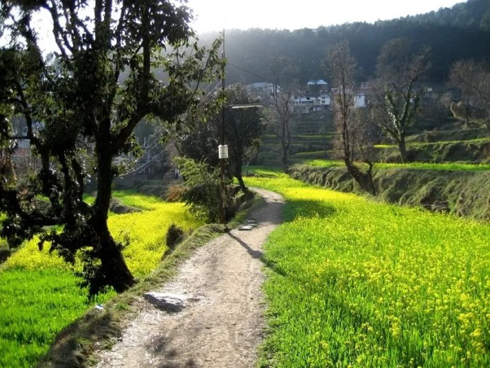 Dharamkot in Dharamsala