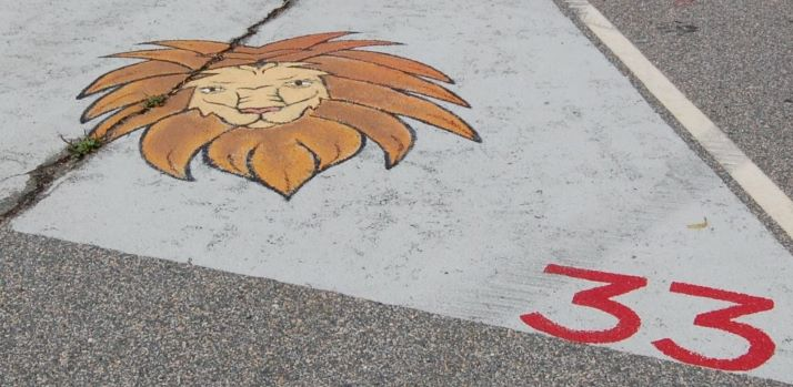 A LION'S HEAD, along with the number 33, was included in Mikayla Venture's painting as a memorial to her childhood friend, McKenzie Leno, a Rogers graduate who died in 2018.