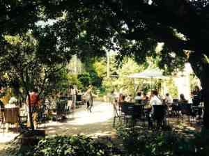 Outdoor terrace at Hortus Amsterdam.