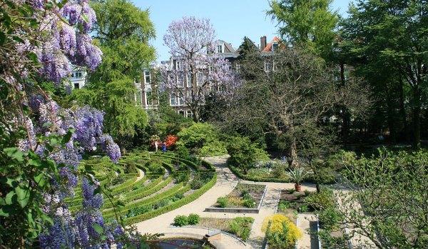 Amsterdam Botanical Garden