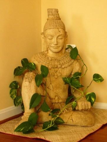 Buddha decor, Indoor Plants