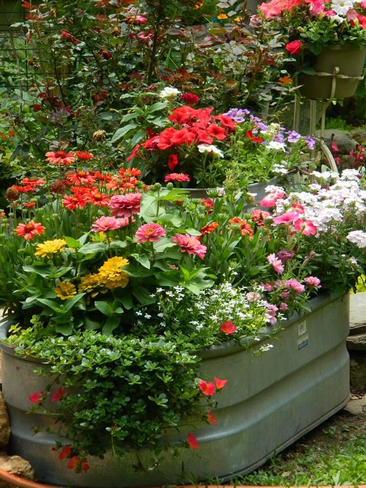 Garden Tub: A Country Garden Like No Other!