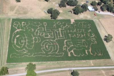 2015 P-6 Farms Corn Maze
