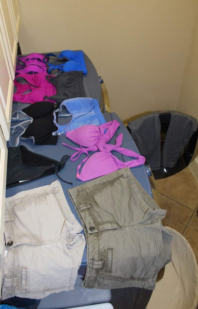 Laundry System-lay flat to dry