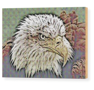 Eagle by Patricia Griffin