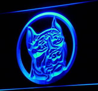 Pit Bull neon sign LED
