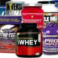 Top 10 Best Protein Shakes