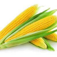 10 Amazing Nutritional Benefits of Corn