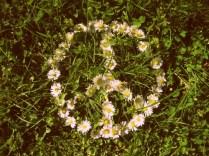 PeaceFlowers