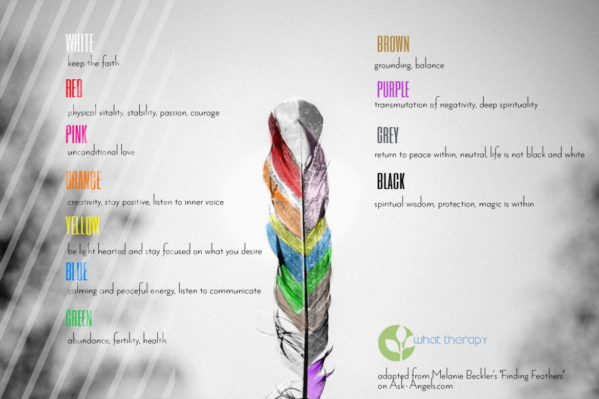 The meaning of different coloured feathers