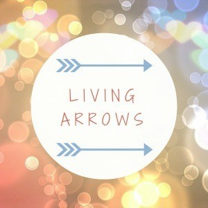 #LivingArrows - Gaps, Grins and Good Fun