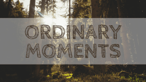 The Ordinary Moments