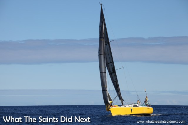 Black Cat, overall winner of the Governor's Cup, makes a day time arrival.