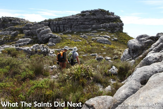 The top of the walk was grass and rocks. Hiking The Table Mountain National Park.
