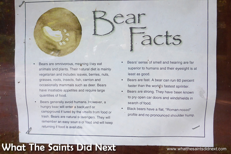 The Bear Facts warning notice at the start of the hike.