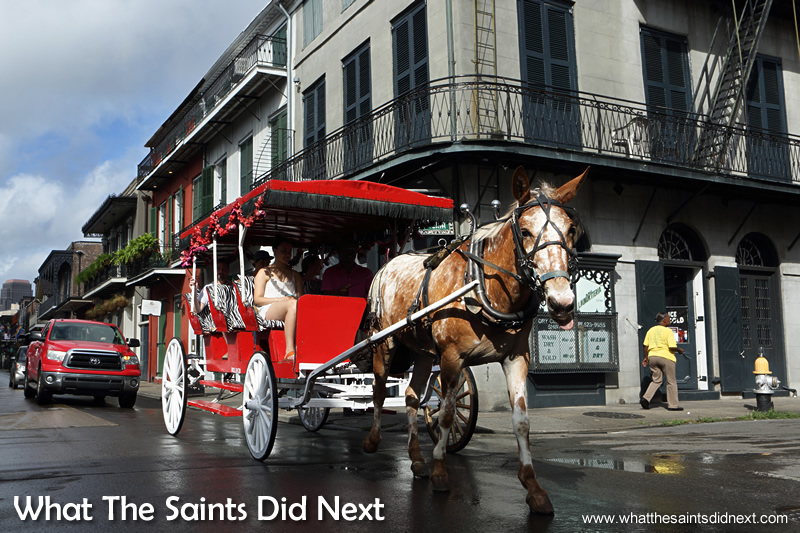 Although we didn't do this ourselves, the carriage tours of the French Quarter looked like a really relaxing way to tour the district. If you stand nearby one of their stops you can pick up interesting tit bits of trivia listening to the driver and tour guides.