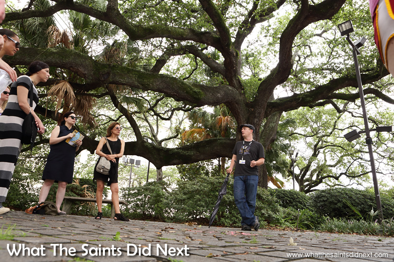 Voodoo in New Orleans is a popular subject as demonstrated by our large walking tour group with Free Tours By Foot.