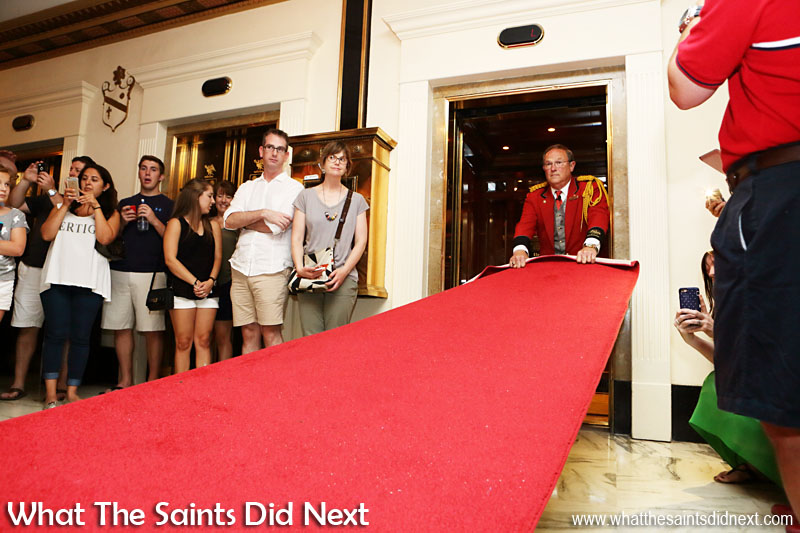 Peabody Hotel Memphis Duck Master getting the red carpet in place. Peabody Hotel Memphis Ducks