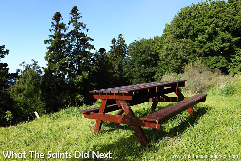 Picnic tables, like this one in the George Benjamin Arboretum, are located at various places around St Helena and always near the road.