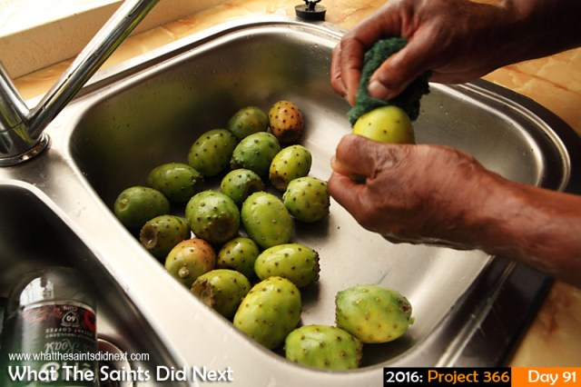 '£1.10 for 5' 31 March 2016, 17:47 - 1/60, f/8, ISO-1600 What The Saints Did Next - 2016 Project 366 Cleaning tungi fruit in the sink.