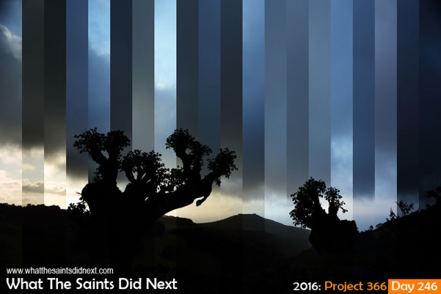'Total recall' 2 September 2016, 17:14-18:10 - 1/400-20, f8, ISO-200 What The Saints Did Next - 2016 Project 366 Overcast winter evening on St Helena Island.