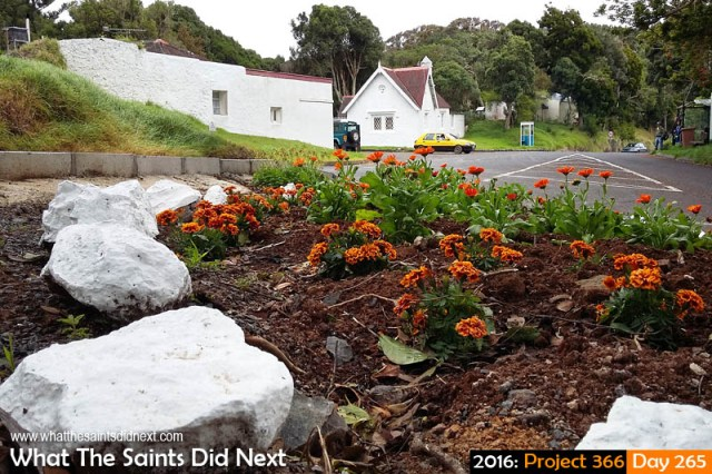 'Edwards 75' 21 September 2016, 16:07 - 1/101, f2.4, ISO-50 - Samsung Galaxy A3 What The Saints Did Next - 2016 Project 366 Newly built flower bed at White Gate, St Helena.