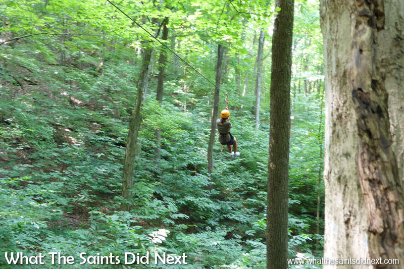Zip-lining through the forest in Nashville, Tennessee. This story has been listed on another blog which covers popular 'Things To Do In Nashville' and has become one of our regular referral sites. Makes it all the more worthwhile.