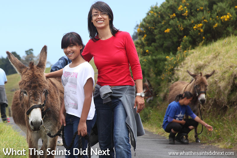 Things To Do With Kids On St Helena - Donkey walking with April on a Saturday morning in 2012.
