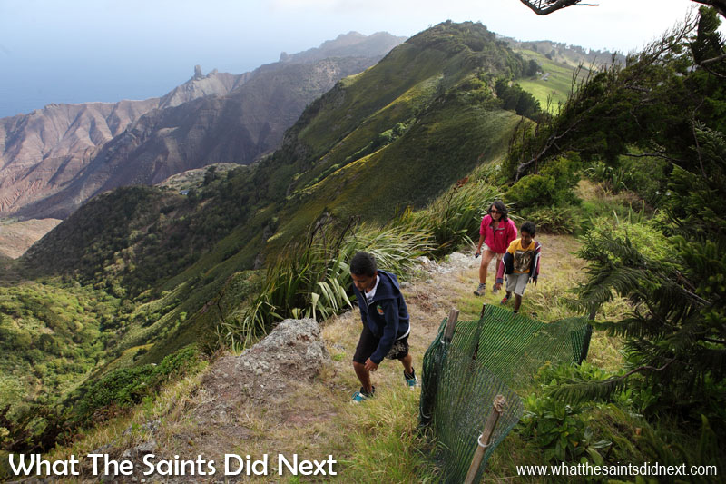 Things To Do With Kids On St Helena - Climbing High Peak with Evan and Jacob. Great views down into Sandy Bay from here; Lot's Wife sticking up in the distance.