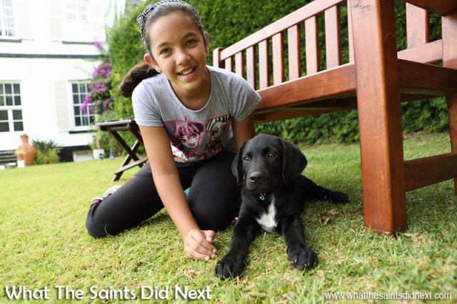 Jordanna and little Cooper. New Dogs, Old Tricks - Dusty's Dozen.