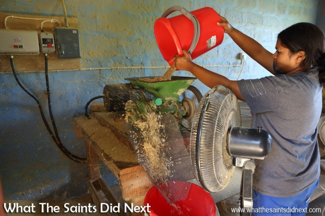 Hulling of the coffee beans taking place at ANRD, Scotland on St Helena. St Helena Coffee by Solomon & Co.