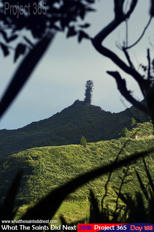 "Mount Acteon, one the <a href=""http://whatthesaintsdidnext.com/highest-point-on-st-helena-guide-hiking-three-little-peaks/"" target=""_blank"" rel=""noopener"">island's highest three peaks</a>."